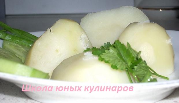 Как сварить картошку?