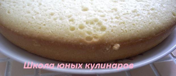 Простой бисквит с крахмалом. Рецепт с фото