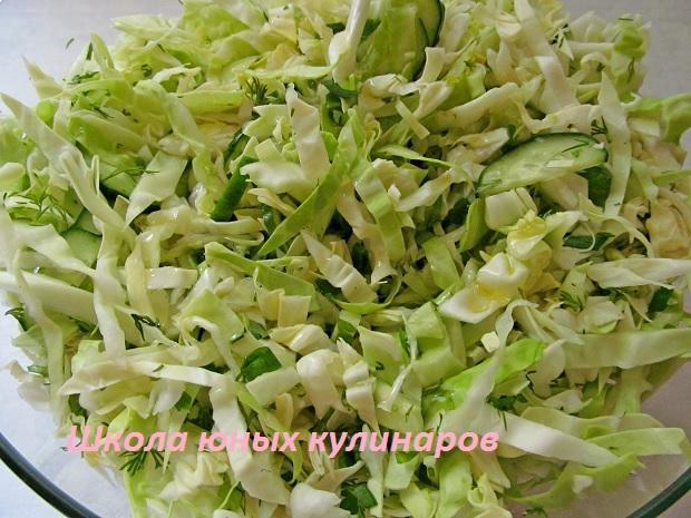 Самый простой салат из молодой капусты со свежим огурцом. Рецепт с фото
