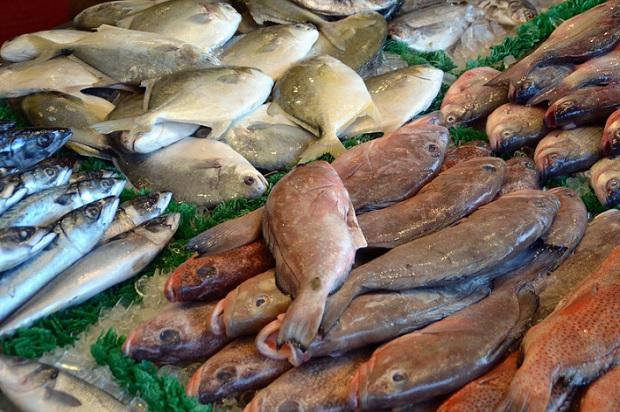 Как хранить рыбу правильно?