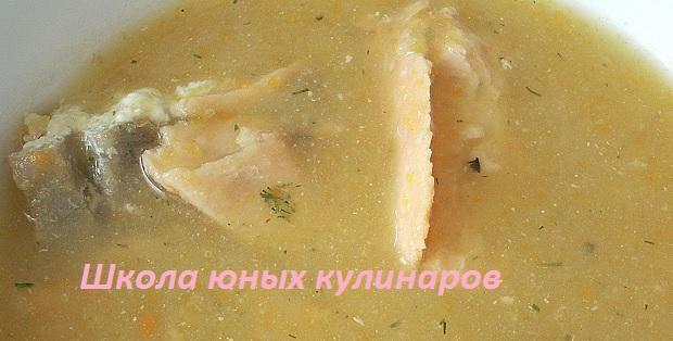 Простой суп-пюре из рыбы (горбуши). Рецепт с фото