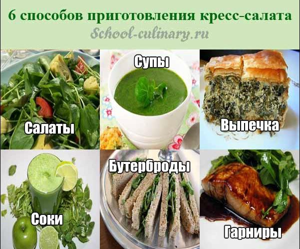 6 способов применения кресс-салата в кулинарии