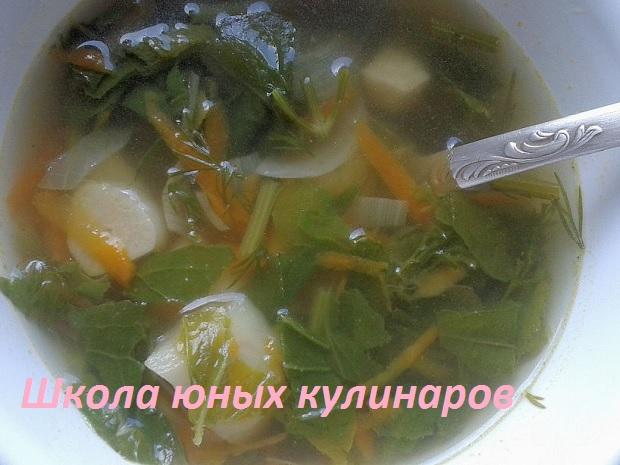 Суп из зелени редиса
