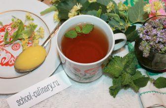 Завариваем вкусный чай с чабрецом