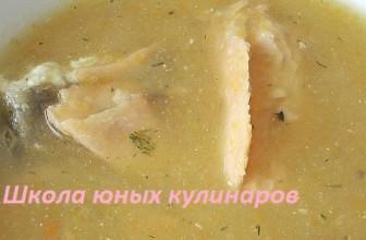 Суп-пюре из рыбы (горбуши)